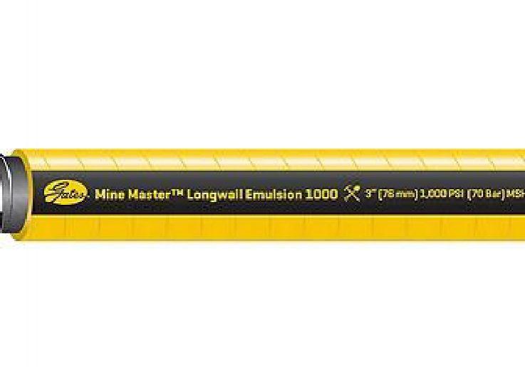 Banner FirstMesa de trabajo 1 copia 12-100